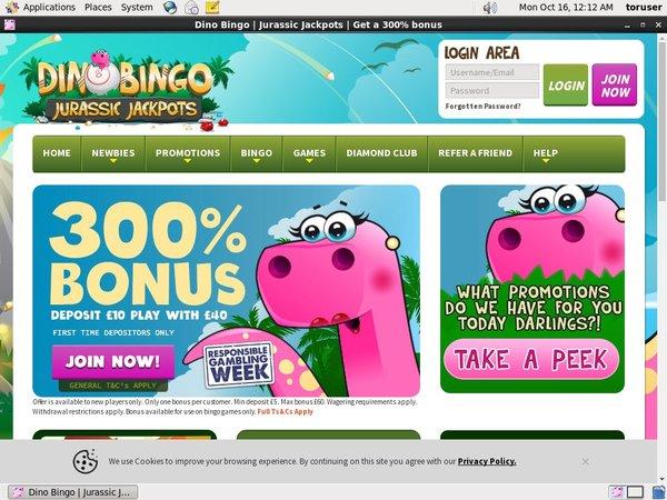 Dino Bingo Forum